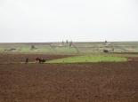 die Felder werden zu Beginn der Regenzeit ...