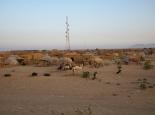 Dorf auf dem Weg zum Nil