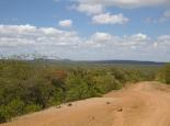 durch den Busch zum Lake Baringo