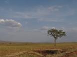 Landschaft im Kidepo NP