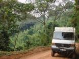 Fahrt durch den Biwindi NP