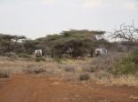 Campingplatz im Bush