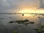 Ebbe am Peponi Beach