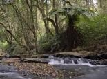 Wasserfall auf dem Zomba-Plateau