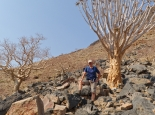 Wanderung zu Köcherbäumen