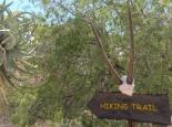 Wanderung im Goegap Reserve