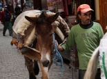 marokko_085