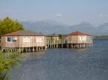 Lagune Patok