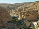 Blick ins Wadi Ayoon