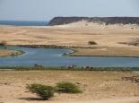 Kamele im Wasser bei Samhuram