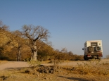 Baobabs im Wadi Hinna