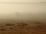 Nebel in der Wüste