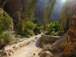 Wanderung im Wadi Shab