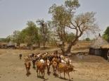 Rundhütten in Äthiopien