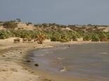 Karibikfeeling in Eliye Springs