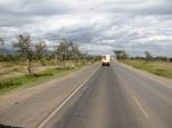 unser erstes Zebra bei Naivasha