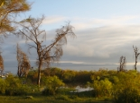 Abendstimmung am Lake Naivasha