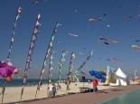 Drachenfestival in Dubai