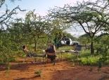 Busch-Camp im Samburu-Land
