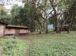 Abstieg am Sasa River Camp vorbei