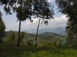 Landschaft am Kivu-See