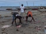 Fischmarkt in Macimboa