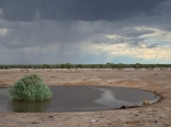 Die Regenzeit naht im Etosha