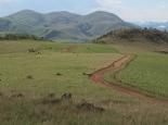 Die Landschaft im Malolotja NR ...