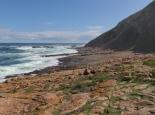 fantastische Küste am Robberg Trail
