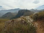 Blick auf das Escarpment - oben ist Lesotho