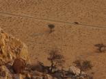 Sonnenuntergang in Klein-Aus mit Wildpferd