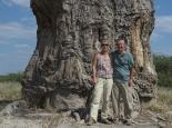 wir und der Baobab