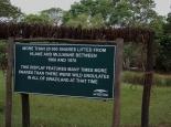 Drahtschlingen im Mlilwane NP