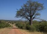Piste am Sambezi entlang