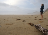 nicht wirklich Strandwetter