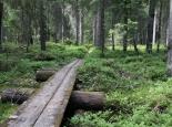 Finnland/Hiidenportti NP