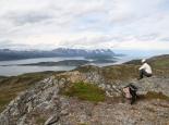 Norwegen/Jockerfjord-> Käfjordbotn