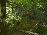 Mystischer Aufstieg zum Kloster